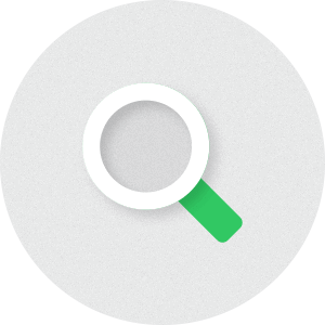 Magnifier - domain whois lookup