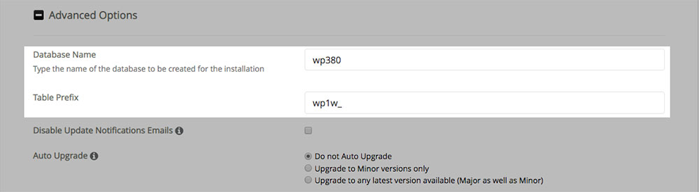 WordPress - Advanced Options